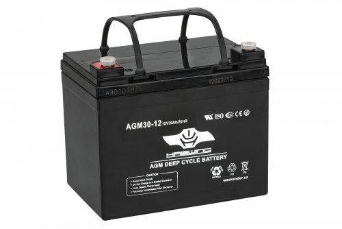 Аккумулятор для электрической якорной лебедки Haswing 30AH AGM H