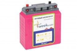 Литий-ионный аккумулятор для лодочного электромотора Weekender 12V100AH
